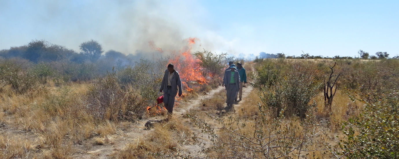 Fire management in Nyae Nyae Conservancy